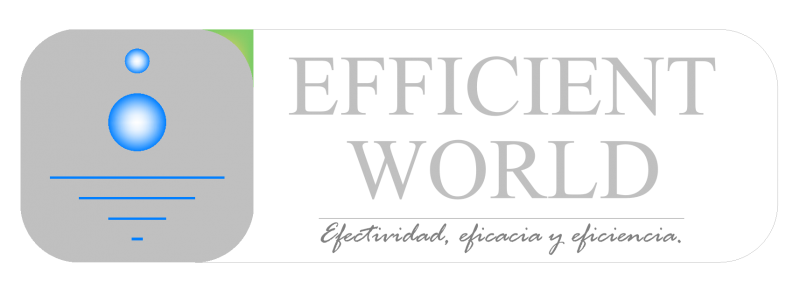 EfficientWorld